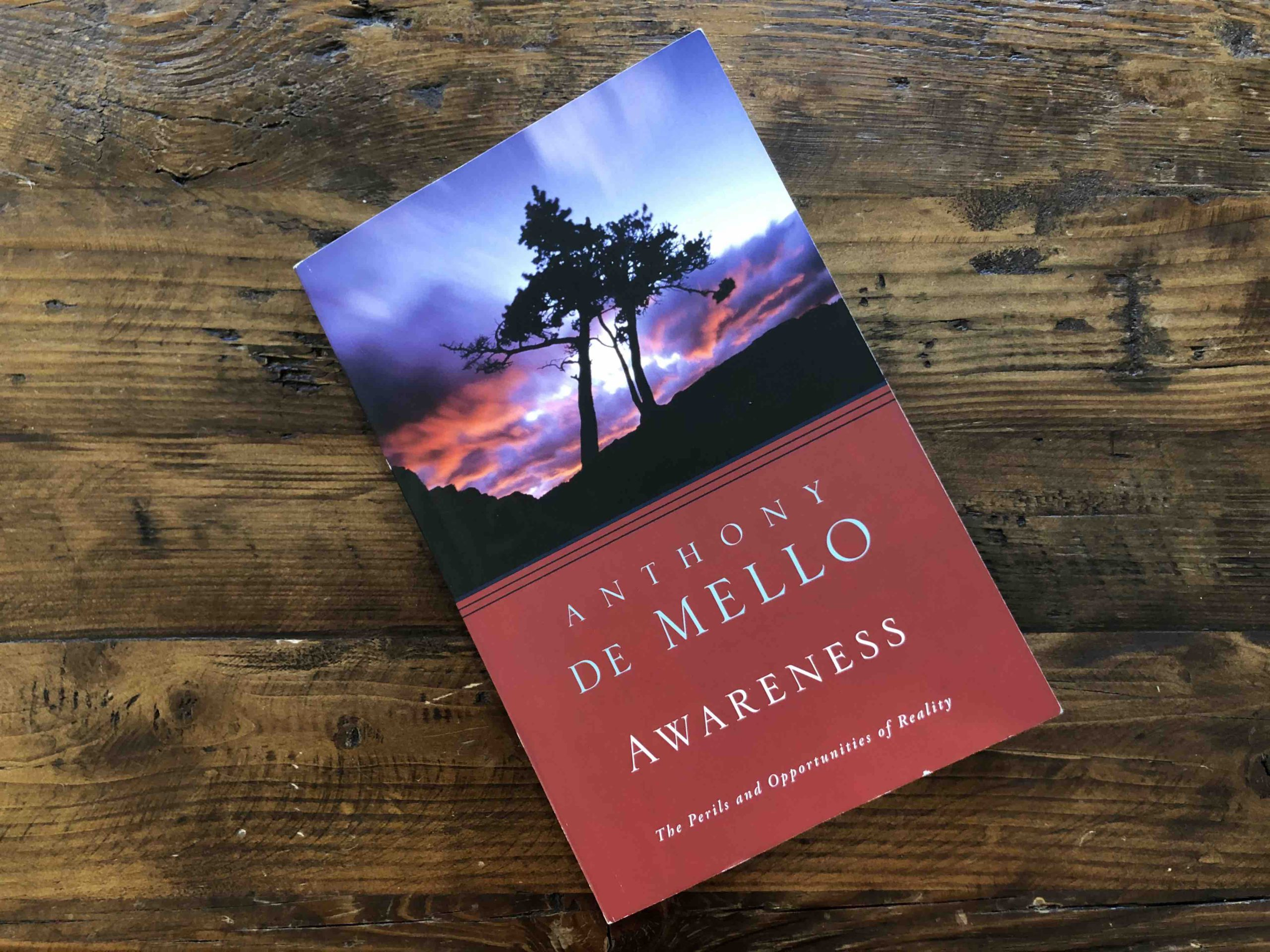 Awareness The Perils and Opportunities of Reality by Anthony De Mello