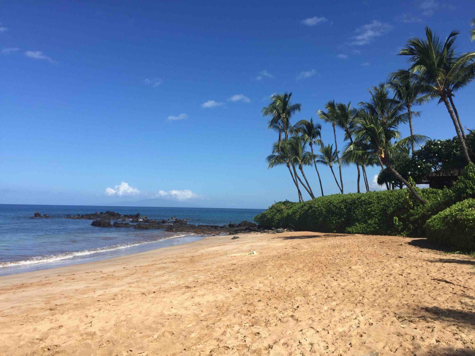 A Beach on Maui